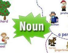 Bài tập chia dạng đúng của danh từ