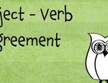 Bài tập về sự hòa hợp S-V phần 5