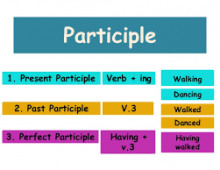 Phân từ( participle)