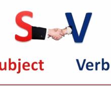 Bài tập trắc nghiệm toeic sự hòa hợp S-V