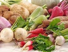 Từ vựng tiếng Anh chủ đề về các loại rau củ quả_p3